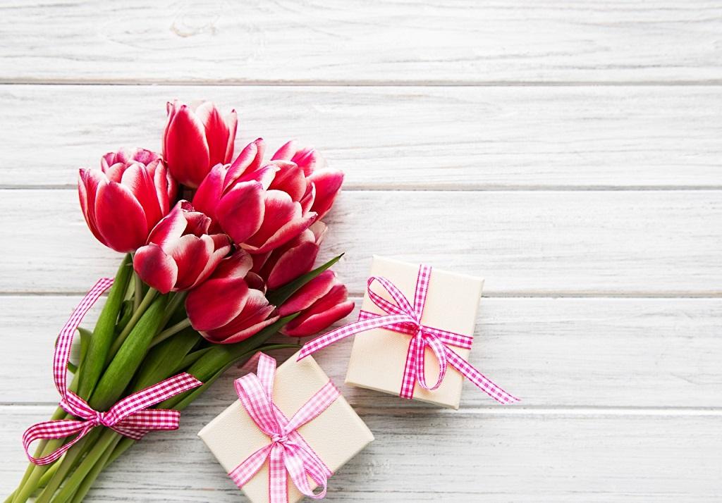 подарок девушке на 8 марта от салонов Ника и Африка